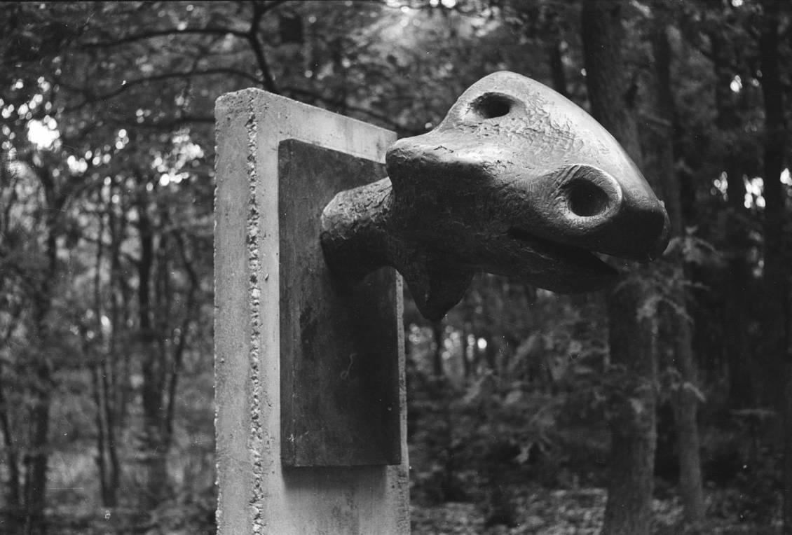 Henry Moore, Animal head, 1956