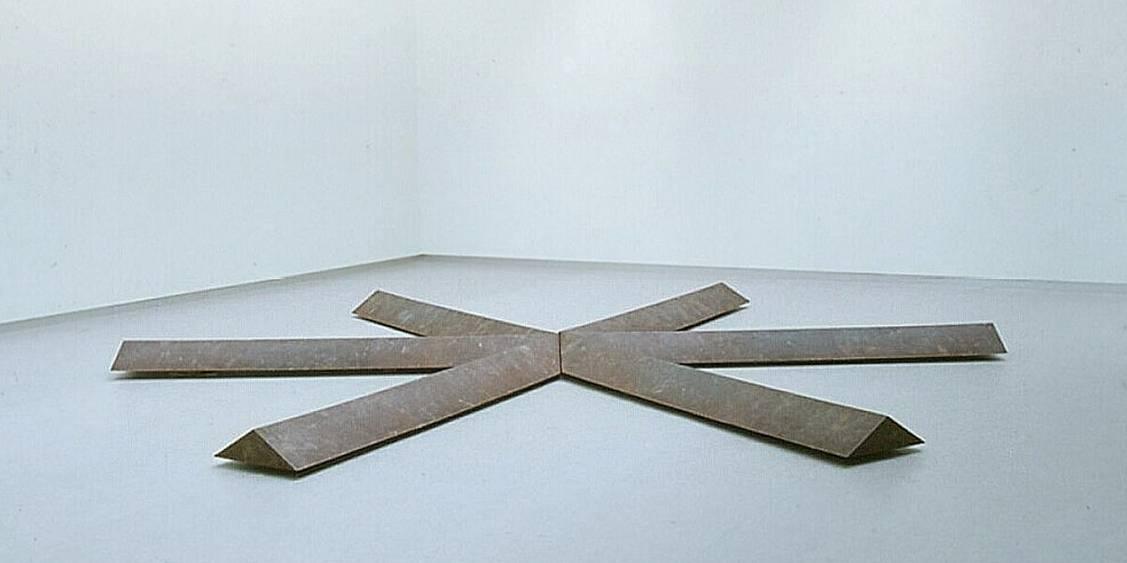 Tentoonstelling Bruce Nauman, 1981